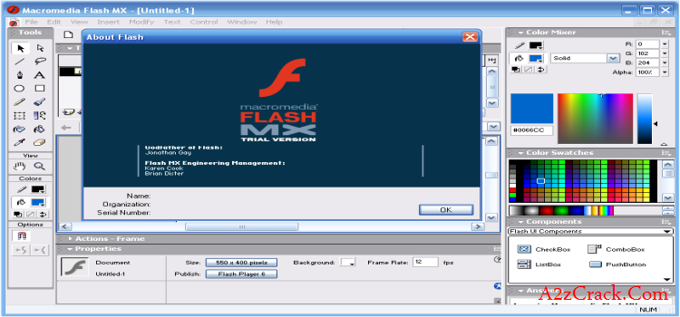 Flash MX Professional 2004