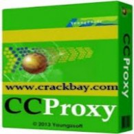 CCProxy Server Software Setup Download