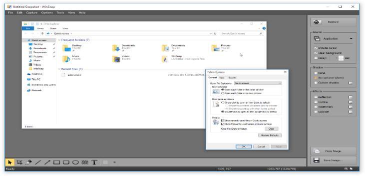 WinSnap v4.6.0 Full Version Download